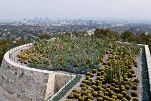 cactus garden at The Getty Center in Los Angeles, California