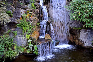 waterfall at the LA Arboretum & Botanic Garden in Arcadia, California.