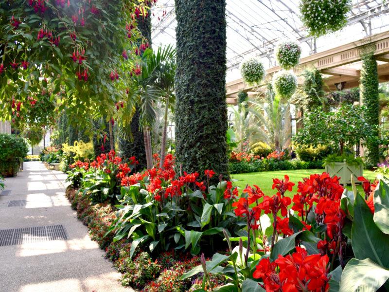 conservatory garden display, taken in Longwood Gardens in Kennett Square, Pennsylvania