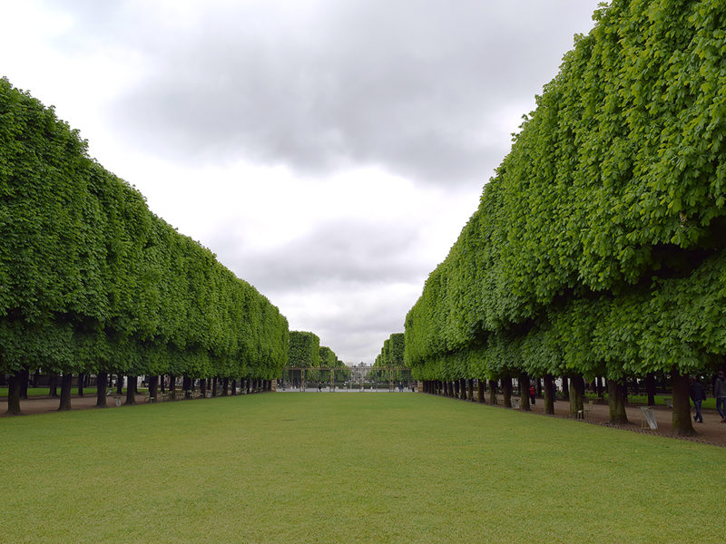 tree-lined promenade at the Jardin du Luxembourg (Luxembourg Gardens) in Paris, France.