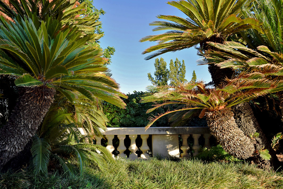 Huntington Library & Gardens in San Marino, California.