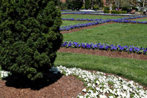 The Enid A. Haupt Garden in Washington, D.C.