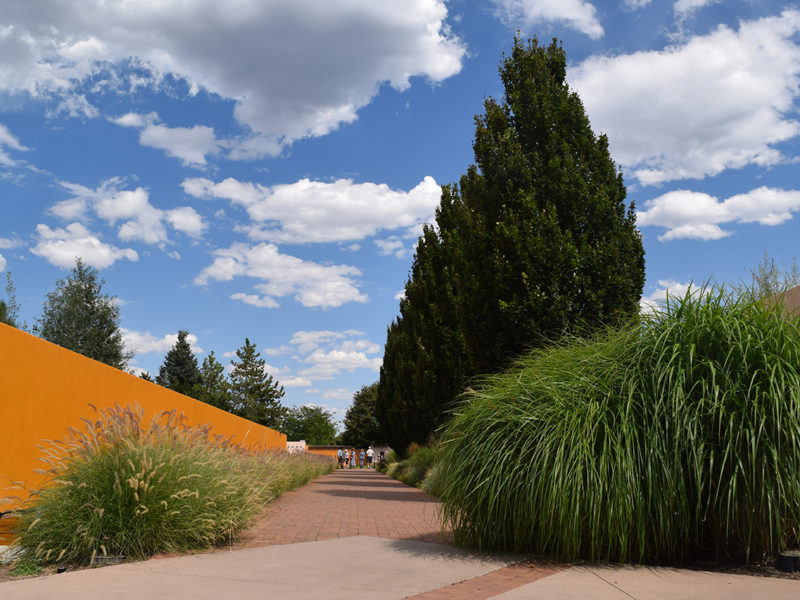 the Romantic Gardens at the Denver Botanic Gardens in Denver, Colorado