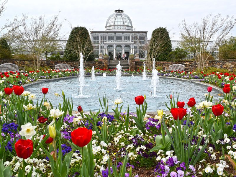 conservatory and fountain at Lewis Ginter Botanical Garden in Henrico, VA