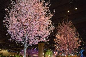 """Philadelphia Flower Show 2017 """"HOLLAND: Flowering the World"""" in Philadelphia, Pennsylvania"""