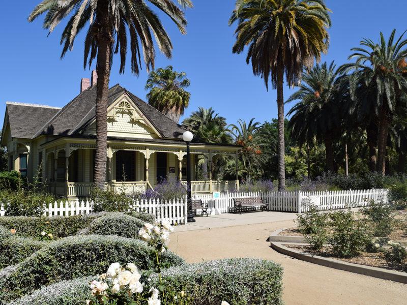 Fullerton Arboretum & Botanic Garden in Fullerton, California