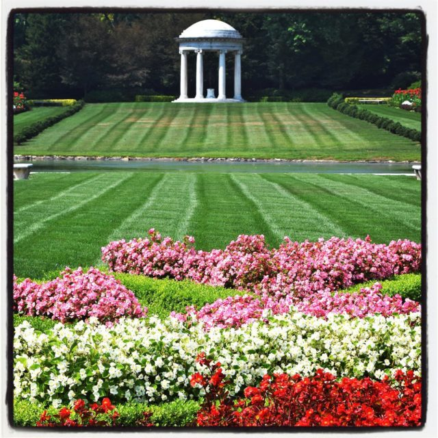 celebrating #NationalPublicGardensWeek by sharing some personal favorite gardens. The formal French gardens of Delaware's @nemoursestate in with its grand vistas, statuary, and various fountains are over the top in the best way. (The garden is currently closed but you can visit virtually for now!)⠀⠀⠀⠀⠀⠀⠀⠀⠀ .⠀⠀⠀⠀⠀⠀⠀⠀⠀ .⠀⠀⠀⠀⠀⠀⠀⠀⠀ .⠀⠀⠀⠀⠀⠀⠀⠀⠀ .⠀⠀⠀⠀⠀⠀⠀⠀⠀ .⠀⠀⠀⠀⠀⠀⠀⠀⠀ #garden #gardenblog #gardens #flowers #nemoursmansionandgardens #nemoursestate #gardenphotography #temple #deleware  #NPGW2020 #all_gardens #ourgardensyourhome #landscapedesign